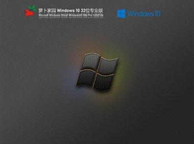 萝卜家园Win10 21H1 32位专业版 V2021.06