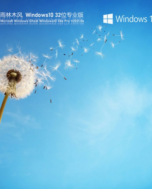 雨林木风Win10 21H1 32位专业版 V2021.06