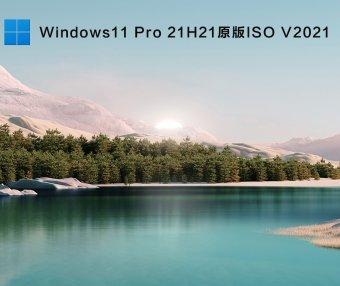 Windows11 X64 Pro 21H2(10.0.22000.51)原版ISO V2021