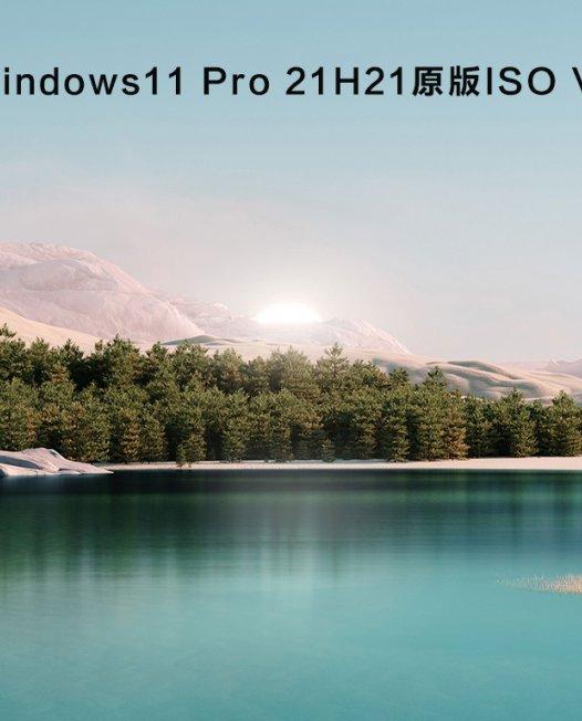 Windows 11 21H2 (OS Build 22000.71/1)